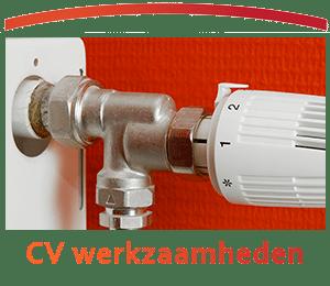 CV werkzaamheden - Zandberg B.V.